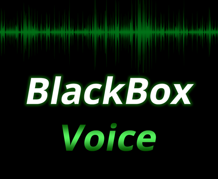BlackBox Voice